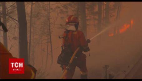 Более 6 тысяч пожарных борются с самым страшным пожаром этого лета в Португалии