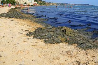 Сморід та купи гнилих водоростей. На Одещині пляж перетворився на болото