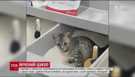 В одному зі столичних супермаркетів кіт помочився у цукор