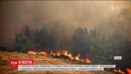 Греция пятый день борется с огнем, который вплотную приблизился к Афинам