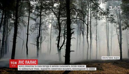 Через спекотну та суху погоду в країні масово палають ліси та трава