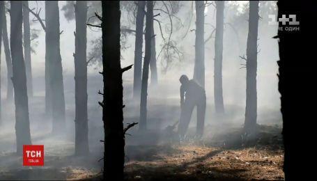 Из-за жаркой и сухой погоды в Украине вспыхивают лесные пожары и воспламеняется трава