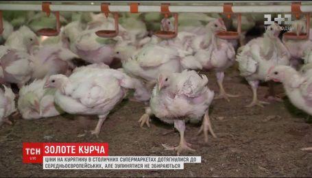 В Україні значно зросла ціна на м'ясо