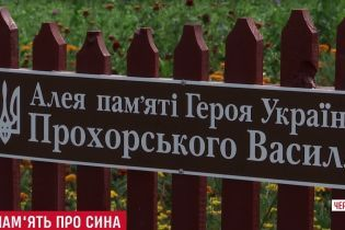 Мать Героя Небесной Сотни взялась собственноручно украшать улицу его имени