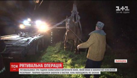 На Львовщине эвакуатором получали лошади по пожарному резервуара