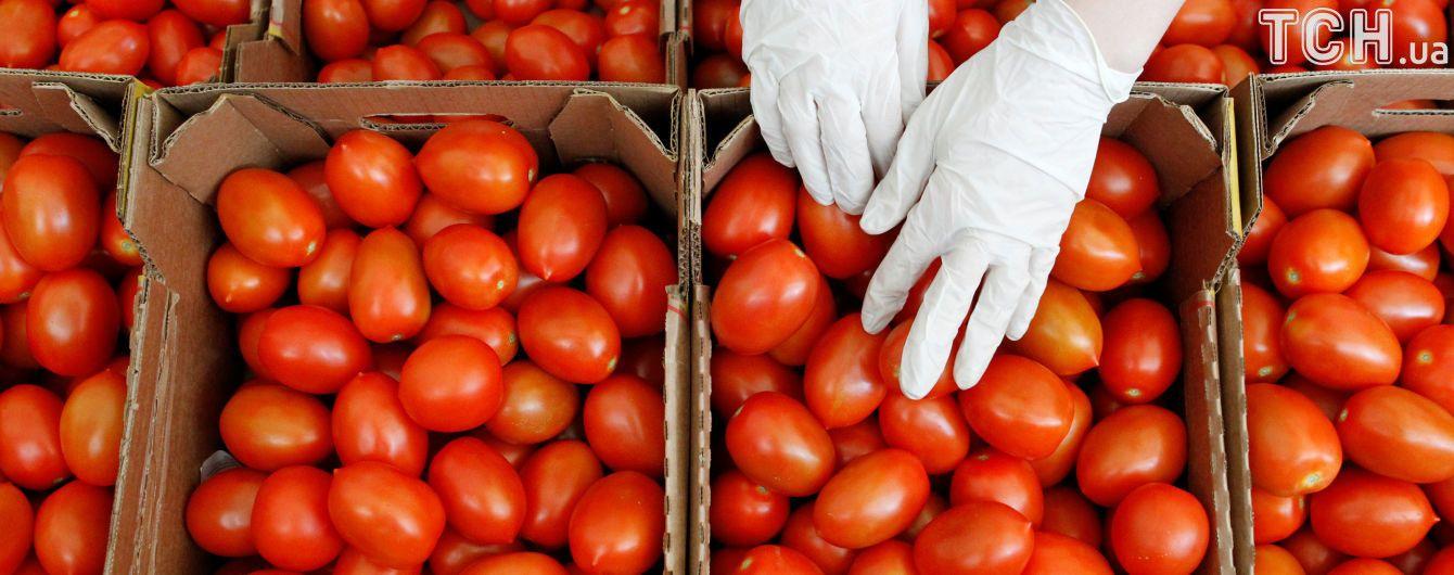 В Україні підстрибнули ціни на тепличні огірки та помідори