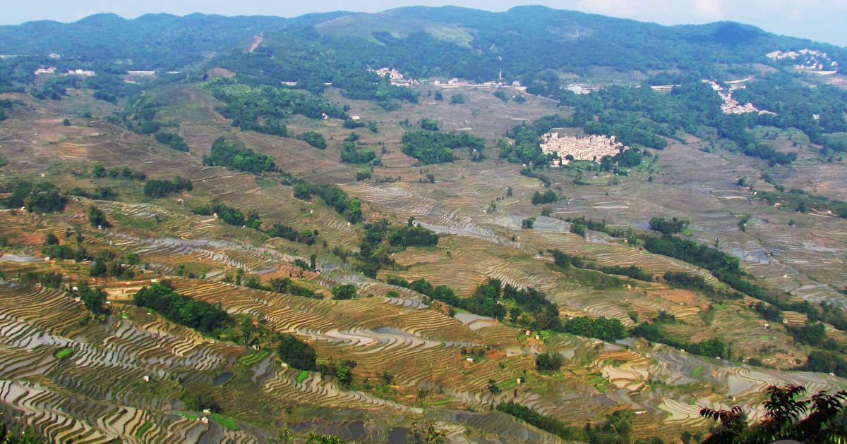 Рисовые террасы Юаньяна