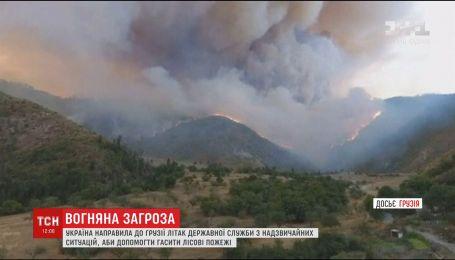 Украина будет помогать Грузии бороться с лесными пожарами