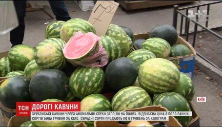 Арбузный кризис: украинцев шокируют нынешние цены на бахчевые