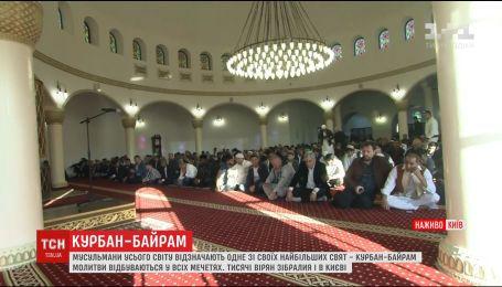 Совместная молитва и жертвоприношение: мусульмане отмечают Курбан-байрам