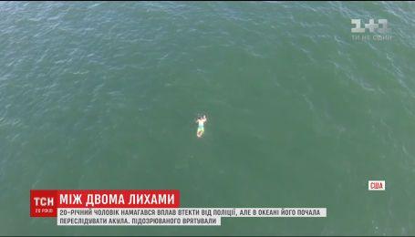 В США мужчина пытался избежать ареста и прыгнул в океан, где его подстерегала акула