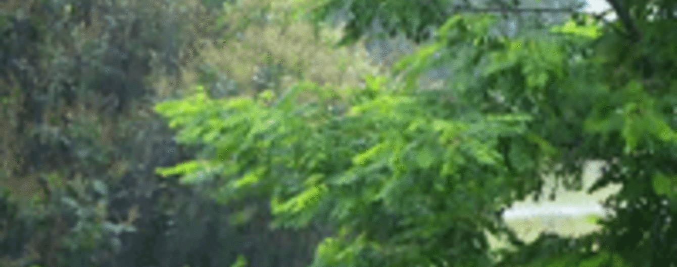 Частину України накриють сильні зливи з градом. Прогноз погоди на 14 червня