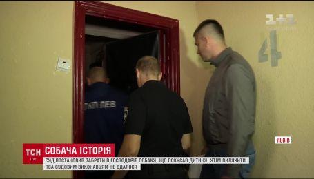 Во Львове исполнительная служба подозревает, что хозяева скрывают собаку от исполнения решения суда
