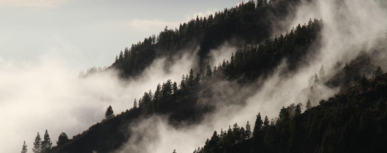 Синоптики обіцяють тумани та похолодання. Прогноз погоди до кінця тижня