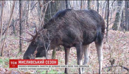 Экологи предлагают занести лосей в Красную книгу Украины
