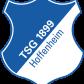 Эмблема ФК «Хоффенхайм»