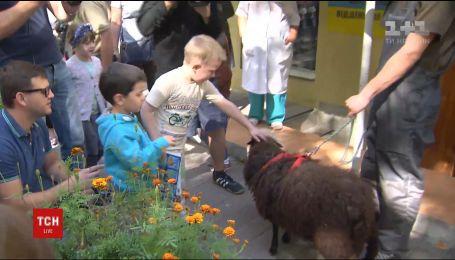 """Больным детям в """"Охматдете"""" устроили праздник с животными из столичного зоопарка"""