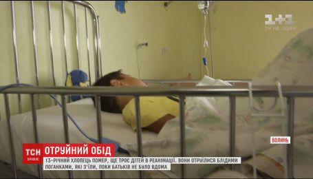 13-летний парень умер от отравления грибами на Волыни