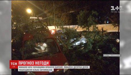 Страшный ураган пронесся Черновцами