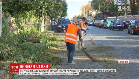 Черновцы приходят в себя после мощного урагана