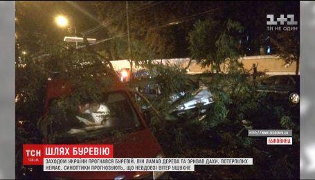 Понад півтисячі сіл і містечок на Заході України знеструмлено через потужний буревій