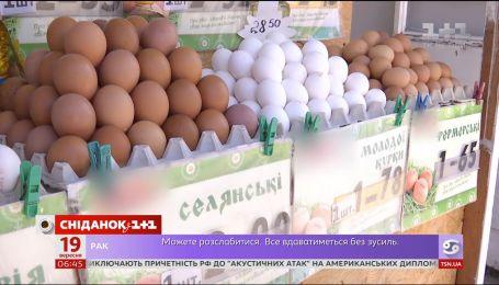 Почему цены на яйца существенно выросли