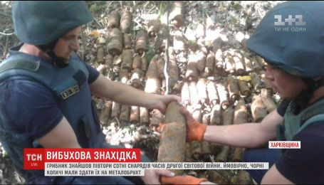 На Харьковщине грибник нашел полторы сотни снарядов времен Второй мировой войны