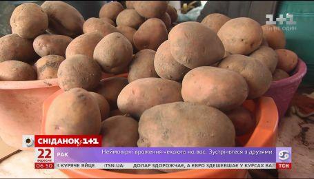 В Україні впали ціни на картоплю