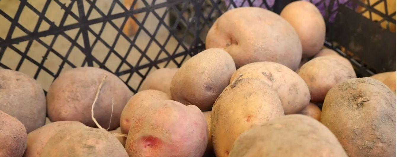 Эксперты предсказывают в этом году подорожание картофеля и крупы