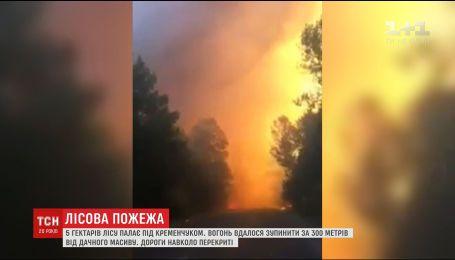 Из-за лесного пожара под Кременчугом спасатели эвакуируют местных жителей