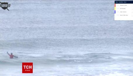 Два кити-вбивці вторглися на змагання серфінгістів