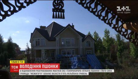 """Занедбані маєтки Пшонки після пограбувань передали на зберігання громаді """"Межигір'я"""""""