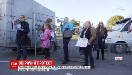 В Луцке активисты устроили акцию протеста против содержания животных в клетках