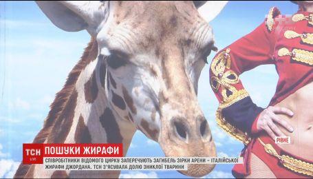 Жителей Ровно напугало исчезновения жирафа, которого в город на гастроли привез цирк
