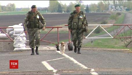 Украинские пограничники, которых задержали русские, могут вернуться на родину