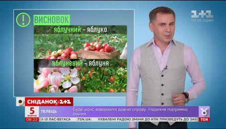 Яблучний чи яблуневий сік - експрес-урок