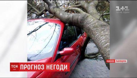 Мощный ураган добрался до западных областей Украины