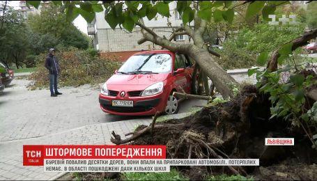 Парад стихии: Украину атакуют сильные дожди и ветер