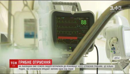 Збільшилась кількість отруєних грибами на Львівщині