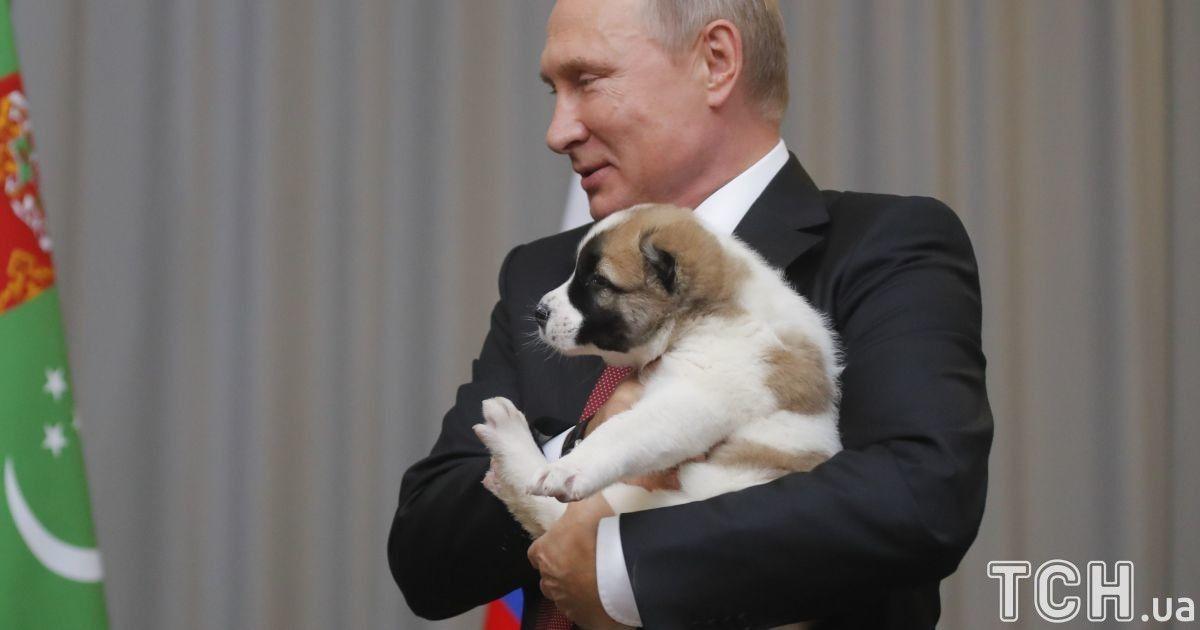 Путіну подарували собаку