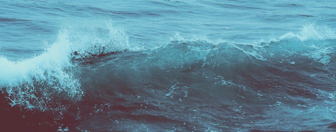 """""""Просто допомогла"""": в Австралії жінка голіруч повернула акулу назад у море"""