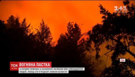 Более десяти человек погибли во время лесных пожаров в Калифорнии