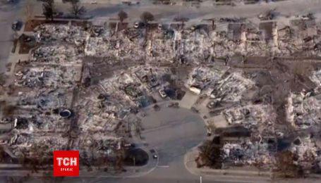 В Калифорнии огонь уничтожил крупнейшие виноградники в регионе