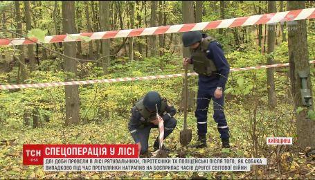 Опасный лес: на Киевщине собака на прогулке упала в яму с реактивным снарядом