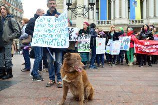 Одеський суд вперше в історії України арештував чоловіка за жорстоке поводження з тваринами