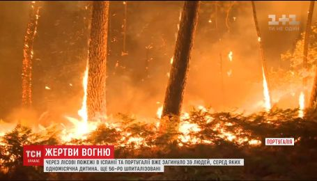 В Испании и Португалии выросло количество жертв лесных пожаров