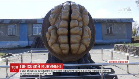 На Днепропетровщине установили памятник грецкому ореху