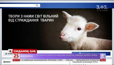 Как украинцы относятся к вегетарианству