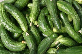 В Україні майже вдвічі підстрибнули ціни на свіжі огірки