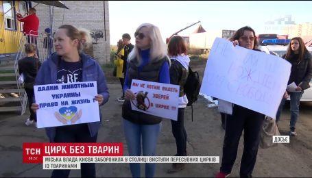 В Києві заборонили пересувні цирки з тваринами